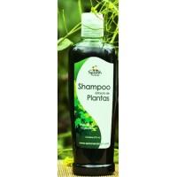 Shampo Plantas Spoon